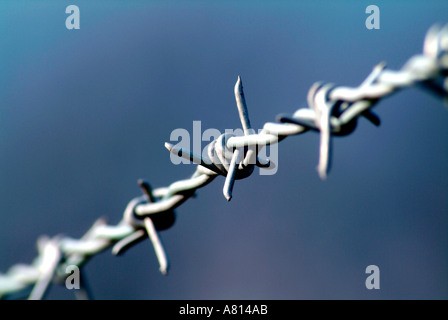 Section of barbed wire - Stock Photo