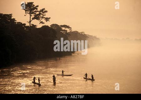 Pirogues dugouts on Congo Zaire River DR Congo ex Zaire Central Africa - Stock Photo