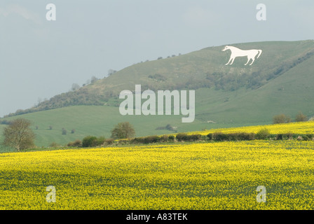 Westbury White Horse, Wiltshire England UK HOMER SYKES - Stock Photo