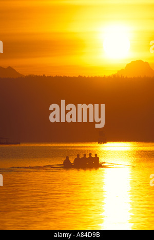 Crew rowing into sunrise on Lake Washington Washington - Stock Photo