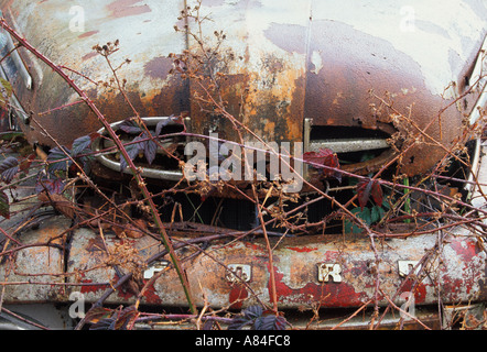 Old Rusty Pickup Truck Overgrown With Green Plants Stock