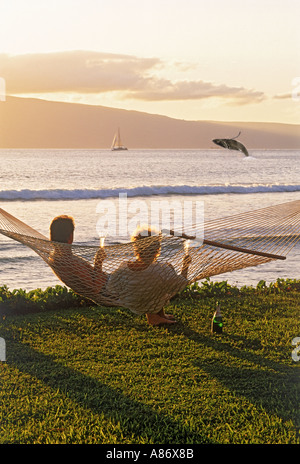 Couple sitting in hammock with sunset drinks watching breaching humpback whale off Island of Maui - Stock Photo