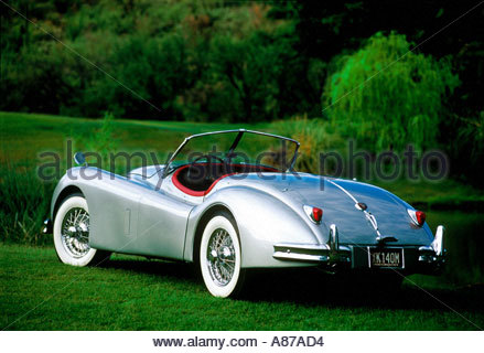Silver Jaguar XK 140 Roadster 1954 vintage car on green grass - Stock Photo