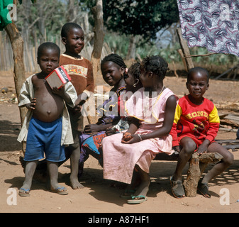 Group of young children in a local native village, The Gambia, West Africa - Stock Photo