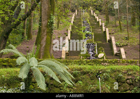 gardens in the Bussaco forest, Luso, portugal - Stock Photo