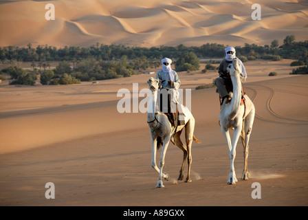 Two Tuareg ride elegantly on their camels in the desert Mandara, Libyan Desert, Sahara, Libya - Stock Photo