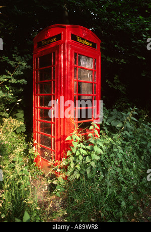Berkshire Binfield Heath overgrown K6 Phone Box - Stock Photo