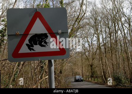 Road sign [Beware of Toads] crossing the road [Horsley Common], Surrey, England. 2006 Ancient woodland The Thornleys - Stock Photo