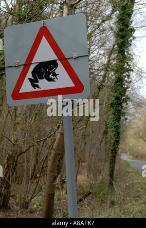Road sign [Beware of Toads] crossing the road [Horsley Common], Surrey, England.   Ancient woodland The Thornleys - Stock Photo