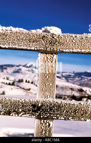 Wyoming Yellowstone National Park Hoar frost on fence in winter - Stock Photo