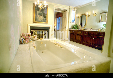 Pittsburgh PA USA Inside American Bathrooms Custom Luxury Interior Single Family House