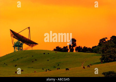 Silhouette of a satelite dish pointing towards an orange sky and sitting on glowing grassland - Stock Photo