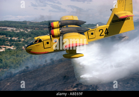 Aerial view of a Canadair firefighting water bomber airplane dousing water over a wildfire, Provence, France, Europe, - Stock Photo