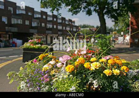 Cheshire Stockport Romiley Compstall Road Floral Planter