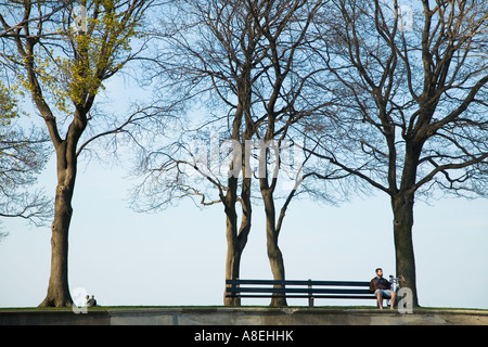 CHICAGO Illinois Man sit on park bench between trees Lake Michigan lakefront couple sit under tree - Stock Photo