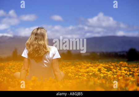 Girl sitting in a field of California Poppies Eschscholzia californica - Stock Photo