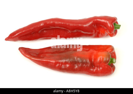 Vegetable produce typical supermarket bought sweet capsicum peppers - Stock Photo