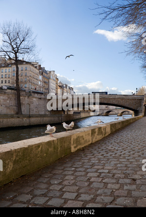 Le pont de la Tournelle over the Seine river - Paris, France - Stock Photo
