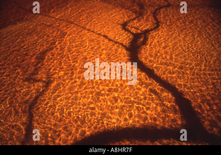 Abstract detail river of clear tannin stained water flowing over sand with shadows of tree boughs - Stock Photo