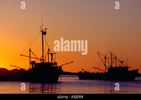 Fishing trawlers at sunset, silhouetted in dusk light - Stock Photo