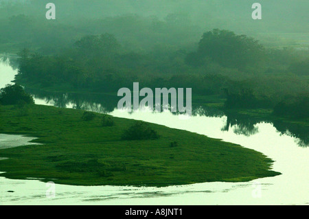 Misty morning at Rio Chagres in Soberania national park, Republic of Panama. - Stock Photo