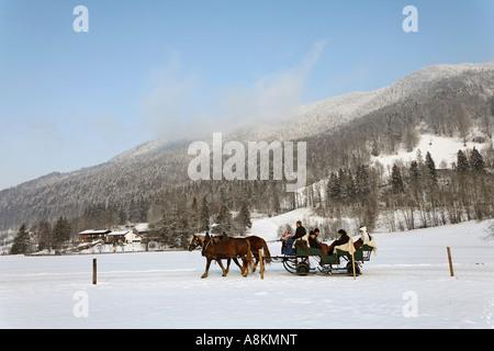 Horse drawn sleigh, Upper Bavaria, Germany - Stock Photo