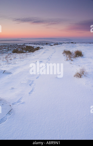 Footprints in virgin snow early morning on Froggatt edge Derbyshire Peak District National park Calver England UK - Stock Photo
