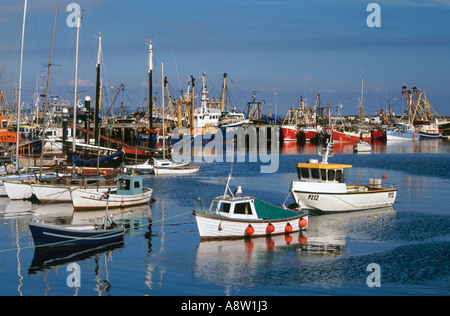 Fishing boats in Newlyn Harbour, West Cornwall, England, UK - Stock Photo