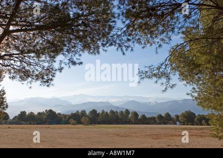 Sierra Nevada mountains near Granada in Spain as seen through thick trees - Stock Photo