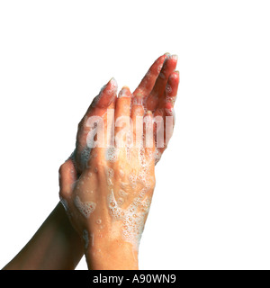 Soapy Hands Lathering Up - Stock Photo