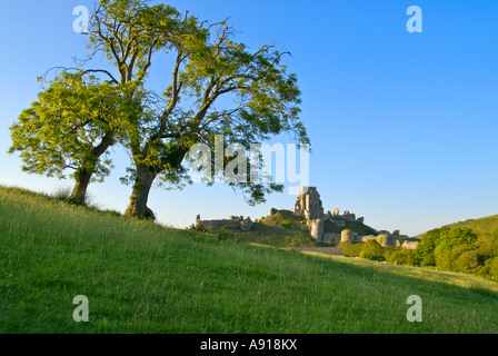 Corfe Castle from the south - Stock Photo
