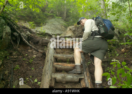 Appalachian Trail- Trail Adopters work on the Wildcat Ridge Trail in rainy and foggy conditions. White Mountains, - Stock Photo