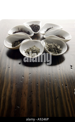 Different types of tea in vessels on a wooden counter - Stock Photo