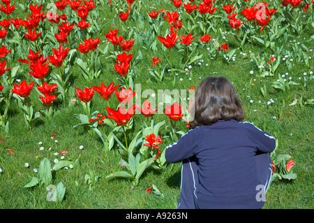Paris FRANCE Female Child 'Enjoying Nature' spring flowers Park 'Bagatelle Garden' Sunday 'Red Tulips' in Field - Stock Photo