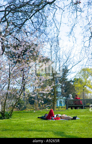 Paris FRANCE, Couples 'Enjoying Nature' in Spring, Urban Park, 'Bagatelle Garden' Trees Sunday Afternoon 'Lying - Stock Photo