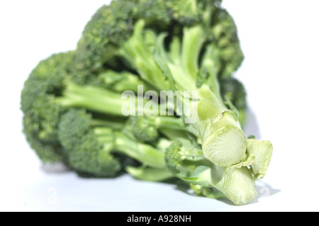 Brocolli - Stock Photo