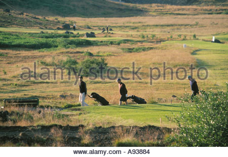 Three men walking with their golf bags in a golf course people playing golf in the background - Stock Photo