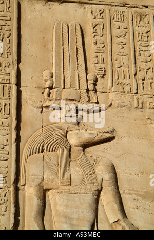 Relief carving of the crocodile headed god, Sobek, Kom Ombo Temple, Egypt - Stock Photo