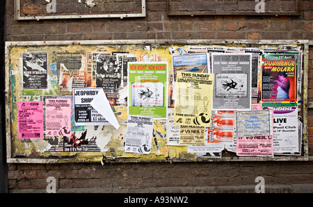 Torn and tatty posters pasted to a faded board in a back street Hereford England UK - Stock Photo