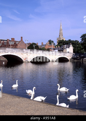 Bedford Bedfordshire historical River Ouse bridge in urban landscape with swans has connections with imprisonment - Stock Photo