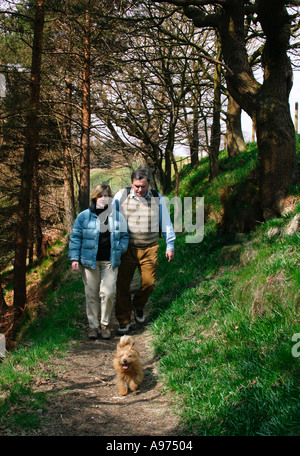 Middle aged couple walking through the  woods with a small Norfolk Terrier in  Yorkshire near Hebden Bridge England - Stock Photo
