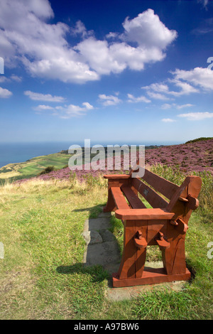 Bench seat on the cliff top path along The Cleveland Way footpath. Ravenscar, North York Moors, Yorkshire Coast, - Stock Photo