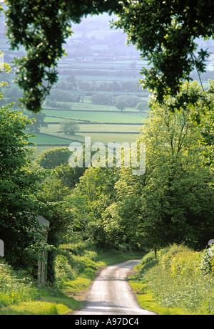 Country lane in Shropshire England UK - Stock Photo