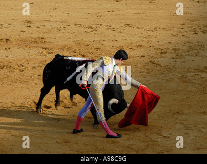 Bullfight in Seville - Stock Photo