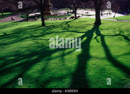 Late Afternoon Sun Casting Long Shadows Of A Man And His Pet Dog And Stock Photo 12187629 Alamy