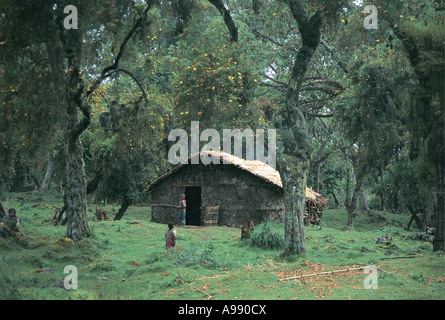 Family settlement Harenna Forest Bale Mountains National Park Ethiopia - Stock Photo