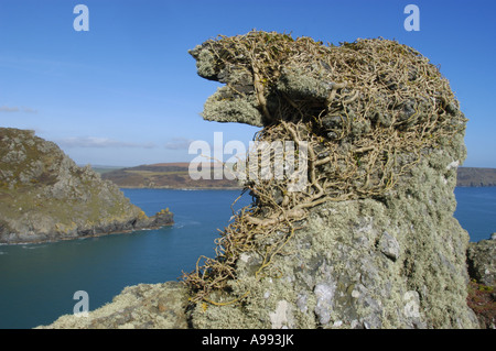 Rock formations in Starehole Bay near Bolt Head on the South West Coast in south Devon England - Stock Photo