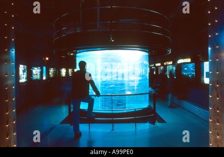 Aquariums in the Oceanographic Museum of Monaco - Stock Photo