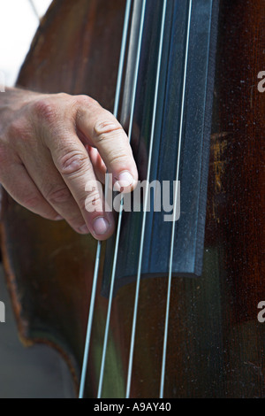 Male hand plucking strings on an upright bass - Stock Photo