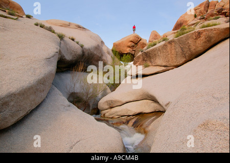 A visitor views the stream in Grapevine Canyon Lake Mead Recreation Area near Laughlin Nevada - Stock Photo